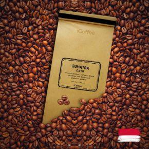 Sumatra Gayo Single Origin Coffee Beans 250 grams